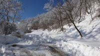zimsko_odr_rekovac04
